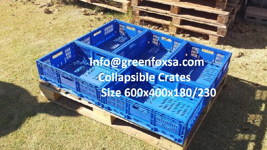 plastic-crates-blue-collapsible-crates